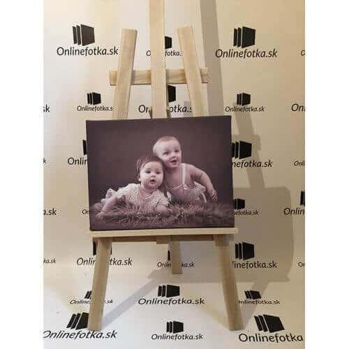 Foto obraz, vytlačený obraz na plátne,foto obraz na plátno