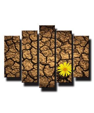 5 dielny obraz na stenu kvet na púšti